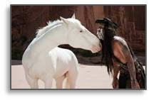 tonto, silver, the lone ranger, johnny depp