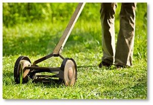 They were too big for many yards around us so summers included the distinctive sound of a push mower whirring a path through the grass, pausing as the pusher pulled it back, then cutting its way forward again.