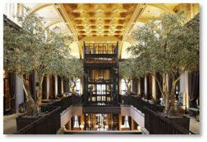 Open the atrium from the ground floor all the way to the iridescent gilded and coffered ceiling