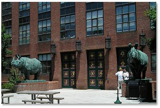"Bessie and Victoria, two Indian rhinos, stand outside Harvard University's Biological Sciences Building, now the department of Molecular and Cellular Biology (MCB). Ms. Weems was commissioned to ""embellish"" the outside of the building in 1930 by Harvard's President, A. Lawrence Lowell. Only 30 years old at the time, she created a carved brick frieze of birds around the top of the building and the three main entrance doors that highlight species of animals that live on earth, air and sea."