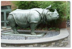 Pedestrians along the Fenway are sometimes surprised to discover a life-sized rhinoceros standing outside the School of the Museum of Fine Arts. The beast is so massive and so imposing that it's hard to miss. But how did a rhinoceros come to be here, bringing a touch of hotter climates to Boston's frigid winter?