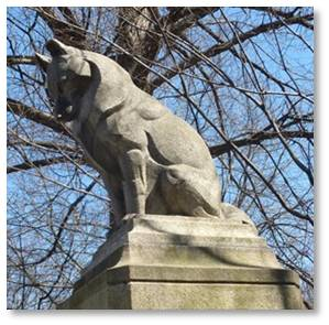 The dog is a German Shepherd, although it looks more like a Husky to me. It was carved by animal sculptor Katherine Lane Weems, who created other animal statues in Boston, including three rhinoceroses and a pod of dolphins. The dog was modeled on Lotta's own pet.