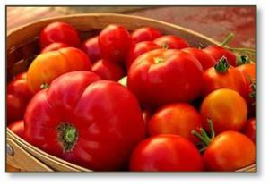 Technically a fruit but used as a vegetable, the tomato is a summer super star. They ripen all at once and demand to be eaten. Apart from slicing and drizzling them with good quality olive oil and balsamic vinegar, tomatoes have lots of ways to be made into something else.
