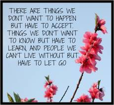 There are things we don't want to happen, but have to accept. Things we don't want to know but have to learn. And people we can't live without but have to let go.