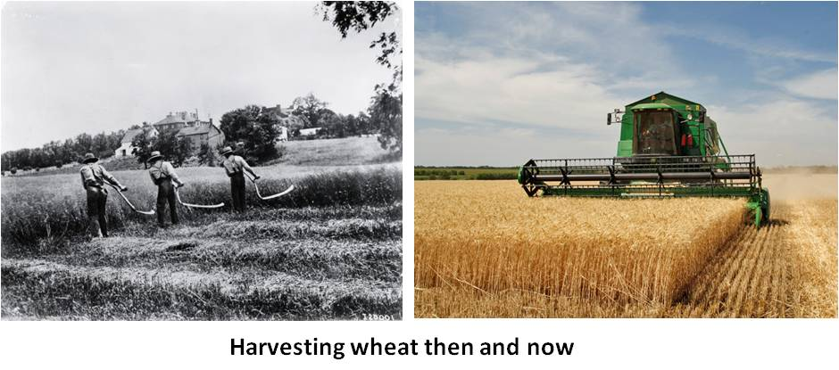 Sometimes we find it difficult to remember how many jobs have already been automated. Armies of field hands once harvested wheat with sweat and scythes over weeks. Now dinosaur-sized machines do the same job in a fraction of the time and driven by one man in an air-conditioned cab.