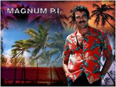 "Suits in a hot climate were impractical, and their efforts resulted in an edict from the Hawaiian government and Tom Selleck, recommending ""the male populace return to 'aloha attire' during the summer months for the sake of comfort and in support of the 50th state's garment industry."""