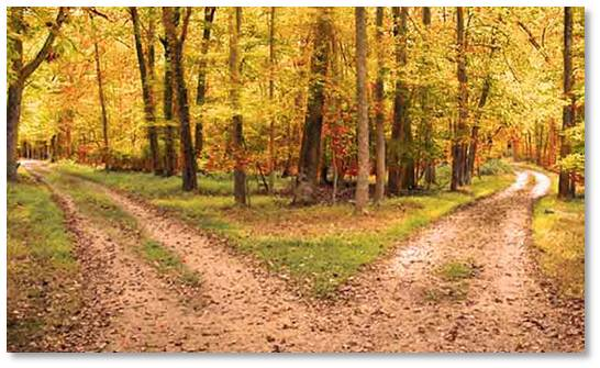 an analysis of two roads diverging in a yellow wood The road not taken looking at the outcomes in  the road not taken looking at the outcomes  frost describes the feeling of two roads diverging and leading.