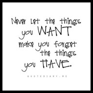 Never Let the Things You Want Make You Forget the Things You Have