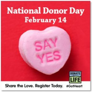 National Donor Day: Say Yes