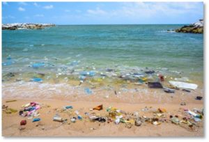 floating plastic trash, plastic trash on the beach, litter, jetsam