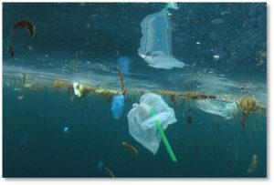 floating plastic trash, Great Pacific Garbage Patch, ocean pollution, plastic pollution
