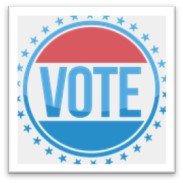 vote, voting, polls, elections, mid-term elections