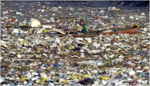 Great Pacific Garbage Patch, Garbology, Edward Humes