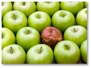 bad cop, bad apple, bad employee, toxic employee