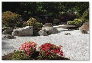 Tenshin-en is best seen in the spring when the azaleas bloom but in the fall the cherry trees and Japanese maples add color to the dark green pines.