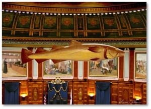 This acknowledgement of the importance of cod fish to the economy hangs in the House of Representatives Hall of the Massachusetts State House on Beacon Hill. Carved in pine, the effigy is five feet, eleven inches long and painted to resemble a live Atlantic Cod.