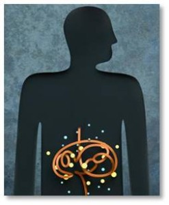 """The explanation that intrigues me the most relates to the gut-brain connection. The digestive system, which houses about 80% of the body's serotonin, in addition to 100 trillion flora in the microbiome, communicates with the brain via the vagus nerve, one of the longest in the body. For example, when serotonin leaves the brain, it looks for a place to """"hide."""" It likes the receptor sites in the gut. If it can hide in these, after thirty minutes these receptors will release dopamine. When that reaches the brain, it causes migraine, and you are toast."""