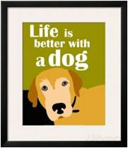 The difference a dog makes. We're dog people. This is for those people like us who come down on the canine side and think life is better with a dog.
