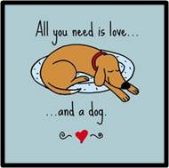 A dog is so much more than a pet. They are members of the family, in a unique and special way. Having a human is a special gift to a dog, and having a dog makes you a better human. Dogs wag their tails from their heart and you always know where you stand.