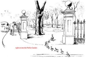 Generations of children have followed the perilous peregrinations of Mrs. Mallard and her children as they marched from Boston's Charles River Esplanade, across the Inner Embankment Road, down Charles Street, across the corner of Beacon Street and into the Public Garden.
