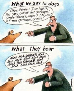 Gary Larson, What We Say, What Dogs Hear, Far Side