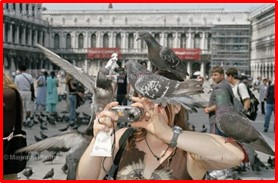 Tourist with Camera, Italy, travel posts, Ugly American