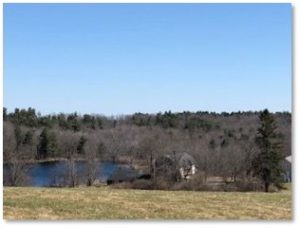 Wachusett Meadow, Wildlife Pond, North Meadow Trail