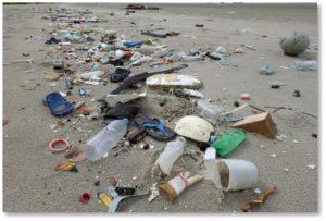 beach trash, garbage, litter, jetsam