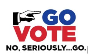 Go Vote, No seriously go, election day, voting,