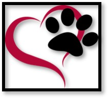 pet shelter, no-kill shelter, adopt a pet, love a pet, foster a pet