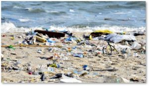 plastic pollution, beach trash, plastic straws, environmentalism