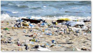 plastic pollution, beach trash, plastic straws, environmentalism