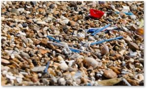 plastic straws on the beach, plastic straw ban