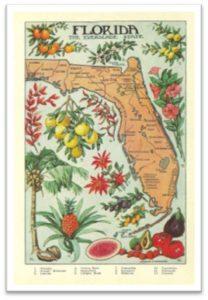 vintage Florida map, agriculture map, Florida agriculture, Susanne's posts