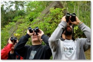 Birdwatchers, endangered birds