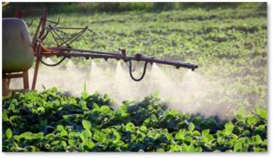 Neonicotinoid spray