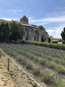 St Paul de Mausole, St. Remy de Provence, lavender fields