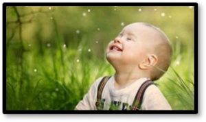 chaild laughing, boy in field, smile