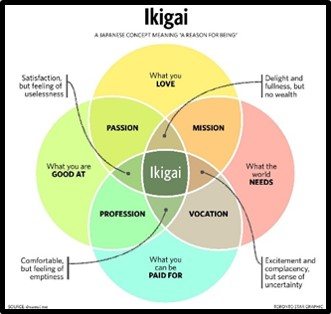 Ikigai, mindfulness, living in the moment