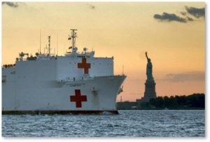Hospital Ship Comfort, pandemic, Statue of Liberty, New York City