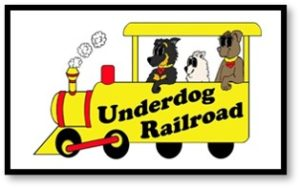 Underdog Railroad, dog rescue, animal welfare, foster dog