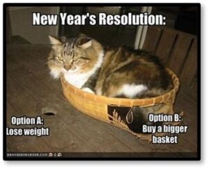 New Year's Resolution, lose weight, buy a bigger basket, resolution