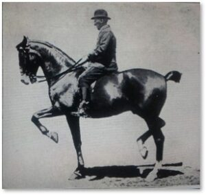 Henri de Bussigny, riding instructor, New Riding Club, Boston