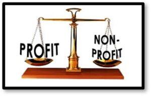 Profit, Non-Profit, Funding, Fees