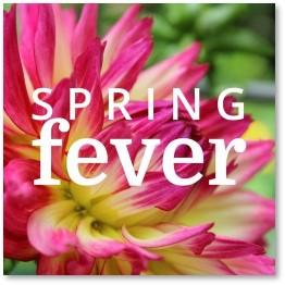 spring fever, pandemic, spring, 2021