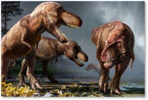 Tyrannosaurus Rex, population, billions, Cretaceous Period, Charles Marshall, Science magazine