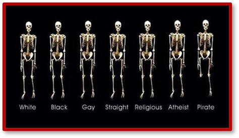 We are all the same inside, skeletons, humanity