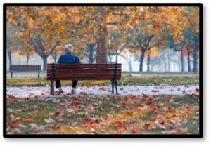 Man on Park Bench, Grief, Survival, Spouse, Widower
