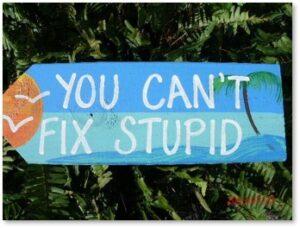 You Can't Fix Stupid, Stupid, situational awareness, common sense